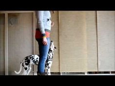 Clickertraining: Bei Fuß gehen - YouTube