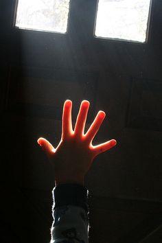 """""""Antes que a morte chegue, vá se movendo do conhecido para o desconhecido. Lembre-se sempre que o novo é melhor que o velho.""""   OSHO    (Imagem: """"experiment five"""", por woodleywonderworks, via Flickr)"""