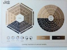 Coffee tasters flavor wheel from Forty Hands in Singapore