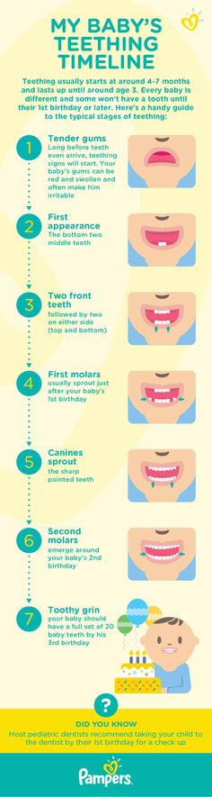 As your baby grows, there may be some milestones that are trickier to navigate than others. This guide is a great way to figure out your baby's teething timeline and gauge when your little one's first tooth will arrive.