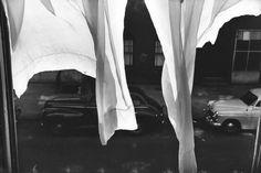 Photograph by Elliott Erwitt, New York City 1954