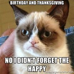 birthday and thanksgiving no i didn't forget the happy | Grumpy Cat