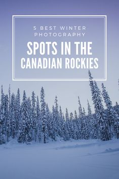 5 Best Winter Photography Spots in the Canadian Rockies - Travel Guides + Itineraries for Busy Explorers - CantStopDreaming Mountain Photography, Winter Photography, Travel Photography, Canadian Winter, Canadian Rockies, Chateau Lake Louise, Banff Springs, Travel Oklahoma, Winter Photos