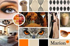 Hi everyone, this is my moodboard for a possible bathroom refashion. I started with the owl's eyes photo and created a color scheme from its colors. Then I sea. Owl Eyes, Photos Of Eyes, Refashion, Mood Boards, Color Schemes, Gray Color, Photoshop, Sea, Bathroom