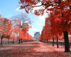 The beautiful Jardin du Luxembourg in Paris!