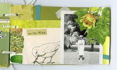Katie Licht's little book