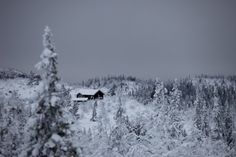 cabinporn:  Härjedalen, Sweden. Submitted by Mats Andersson.