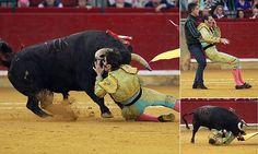 """Bullseye! One-eye matador gored by 100-stone bullDEIXE OS TOUROS EM PAZ GENTE-olho por um touro de 100 pedra que, em seguida, selos em seu estômago  Juan Jose Padilla foi chifrado e apostas pelo touro 100-stone Padilla, que usa um tapa-olho, depois de perder seu olho esquerdo há cinco anos, foi levado para o hospital Apelidado de """"The Pirate ', ele voltou para a praça de touros após uma cirurgia salva-vidas em 2011 A última mauling aconteceu hoje na praça de touros La Misericordia em…"""