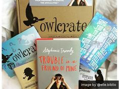 A monthly subscription box for book lovers! Each box contains a new YA novel and goodies!
