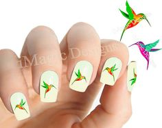 Nail Decals, Water Slide Nail Stickers, Hummingbird