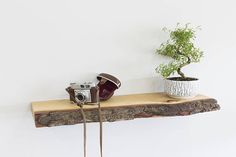 Floating Shelf 200mm Deep Real Bark Edged Solid Oak Floating
