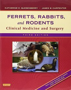 Ferrets, Rabbits, and Rodents: Clinical Medicine and Surgery, 3e by Katherine Quesenberry DVM MPH  Diplomate ABVP http://www.amazon.com/dp/1416066217/ref=cm_sw_r_pi_dp_f3Z5ub1J0Y5VC