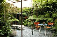 Un patio pequeño con plantas de sombra