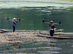 Cormorant Fishers - Li River - Guilin to Yangshuo by Phil @ Delfryn Design, via Flickr
