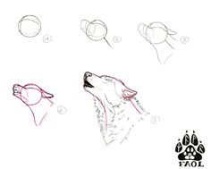 Drawing Techniques, Drawing Tips, Drawing Reference, Cute Animal Drawings, Animal Sketches, Drawing Animals, Wolf Painting, Painting & Drawing, Wolf Poses