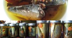 Canned Fish in Olive Oil  Ever since I bought my pressure canner and canned a batch of stew beef cuts, I had been wanting to can sardines ...
