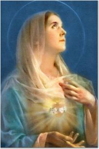 53 Best Virgin Mary quotes images in 2014 | Blessed virgin