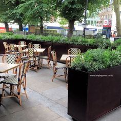 Bespoke Artificial Exterior Planting and Bespoke Trough planters with castors - all supplied and delivered by Bright Green