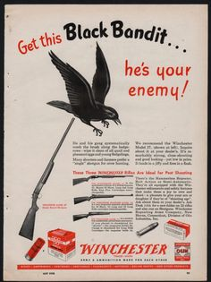 I will do all in my power to correct the situation. Always original pages.never copies or reproductions of any kind. Winchester Firearms, Winchester Shotgun, Pump Action Shotgun, Old Ads, Guns And Ammo, Vintage Ads, Shotguns, Hunting, How To Look Better
