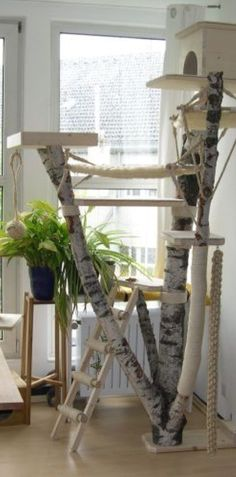 This is the most fantastic cat tree. Ever.