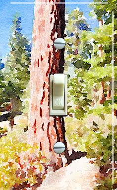Trees on a Walk by Kristen Anderson Single Switch Plate   ***FREE Shipping*** by ArtistSwitchPlates on Etsy