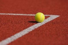 Tennis, Wimbledon #tennis #tenis #sport #wallpapers #tapety