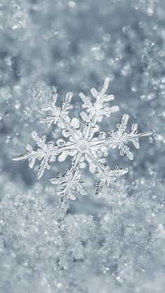 Ice Snowflake iPhone 7 Plus Wallpaper
