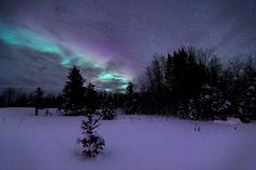 Snow + Northern Lights