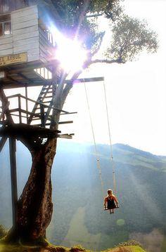The Crazy Swing At Casa Del Arbol 4