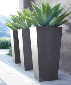 tall grey modern planters - $175 - https://www.etsy.com/listing/521181483/contemporary-precast-stone-planters