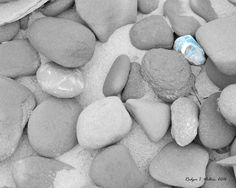 by WilkiePhotography on Etsy