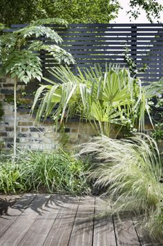 Black fences, brick wall and luscious green for the contemporary garden | gardenista