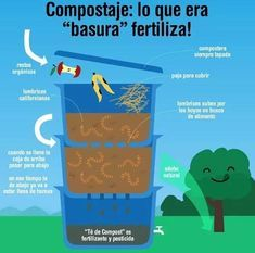 Eco Garden, Vegetable Garden Design, Worm Farm Diy, Faire Son Compost, Home Hydroponics, Gardening For Dummies, Worm Composting, Worms, Ecology