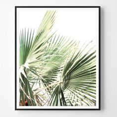 Palm Print Neutral Photography Minimal photo by ScandiHomeDesign