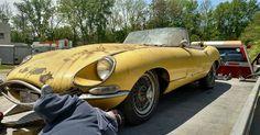 Barn Cat Found: 1967 Jaguar XKE - http://barnfinds.com/barn-cat-found-1967-jaguar-xke/