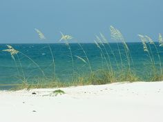 st george's island - SPRING BREAK!!!