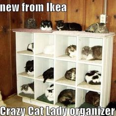 Who else gets lost in Ikea? Other account…