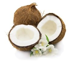 Egrow Coconut Tree Seeds Perennial Bonsai Juicy Fruit Plants for Home and Garden Planting Coconut Oil For Acne, Coconut Oil Uses, Coconut Water, Coconut Balls, Bonsai, Coconut Milk Recipes, Benefits Of Coconut Oil, Oil Benefits, Gourmet