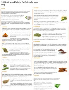 10 spices dogs can have You are in the right place about simple Homemade baby foods Here we offer yo Cereal Recipes, Baby Food Recipes, Cat Care Tips, Pet Tips, Dog Care, Puppy Food, Puppy Treats, Fruits For Dogs, Bland Food