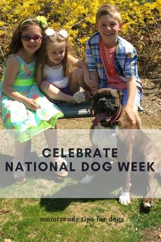 National Dog Week |