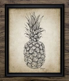 Pineapple Pencil Drawing Art Print - Pineapple Illustration - Pineapple - Digital Art - Printable Art - Single Print #1007 -INSTANT DOWNLOAD