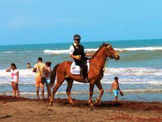 ReporteLobby: ¿En que consiste el Operativo Vacacional de verano 2014?