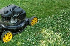 Getting Your Lawn Mower Ready for Use | Stretcher.com - Two hours now will save you time and money later