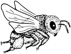 Bee 5 coloring page from Bees category. Select from 31927 printable crafts of cartoons, nature, animals, Bible and many more. Bee Coloring Pages, Printable Adult Coloring Pages, Coloring Books, Free Coloring, Colouring, Bee Silhouette, Silhouette Clip Art, Embroidery Works, Embroidery Patterns