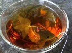 Goldfish Tea Bags