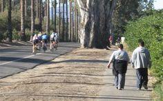 Riverside, California   City of Arts & Innovation   Bicycle Program