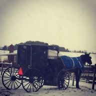 Parked buggy @Wendy Felts Pagot's Amish Country