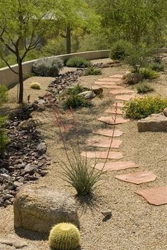 pathway Side yard with drainage trench drain rocks Rainwater harvesting - All For Garden Landscaping With Rocks, Front Yard Landscaping, Backyard Landscaping, Landscaping Ideas, Dessert Landscaping, Arizona Landscaping, Sloped Backyard, Luxury Landscaping, Small Backyard Gardens