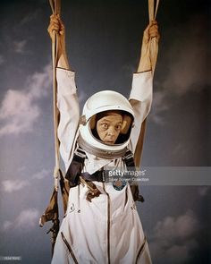 don knotts reluctant astronaut - photo #20