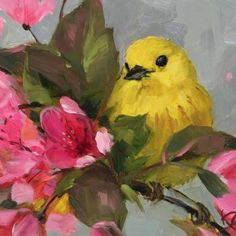 """Yellow Warbler & Blossoms II"" original fine art by Krista Eaton Small Canvas Paintings, Animal Paintings, Canvas Art, Art Quilling, Bird Artwork, Guache, Bird Drawings, Bird Pictures, Acrylic Art"